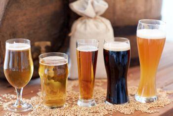 biersorten fuer zapfanlagen ii ii  schmeckt passt